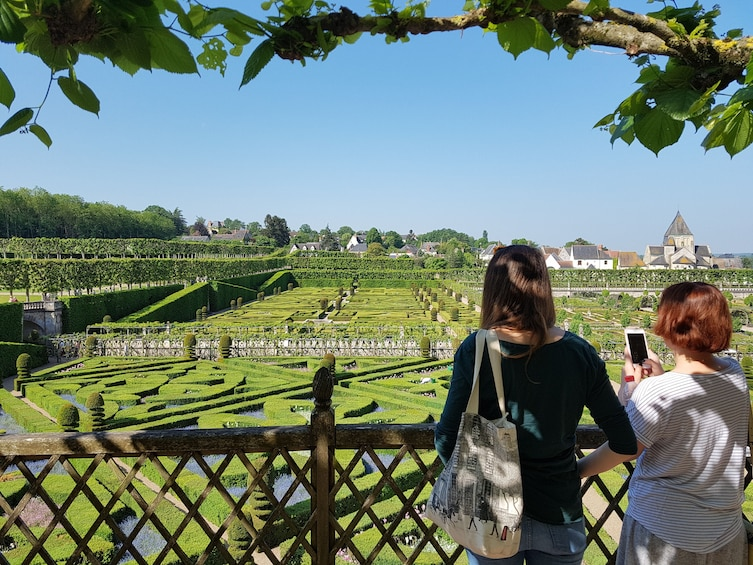 Show item 1 of 5. Villandry & l'Islette châteaux and Vouvray wine tour