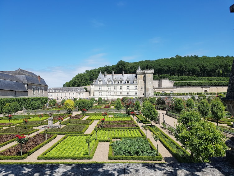 Show item 2 of 5. Villandry & l'Islette châteaux and Vouvray wine tour