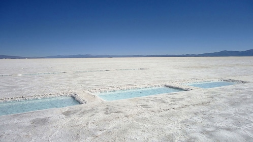 Square pools of water dot the Salinas Grandes salt fields in Argentina