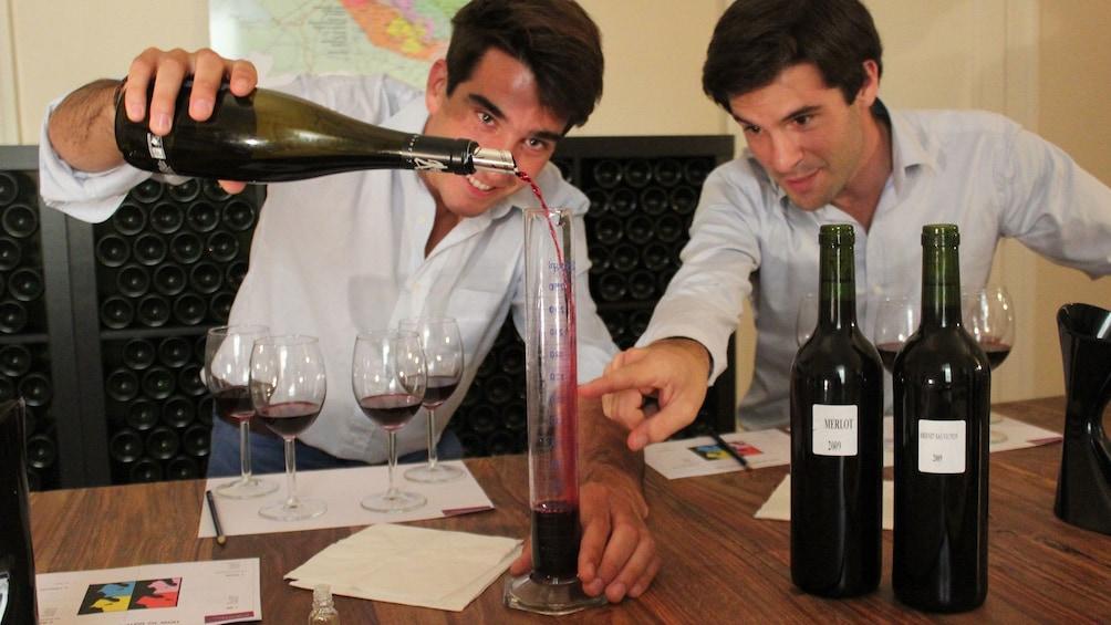 Charger l'élément 1 sur 5. Two people examining different red wines at Saint-Émilion Vineyard