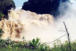 4 days Zongo falls, Bonobos and Kinshasa city experience