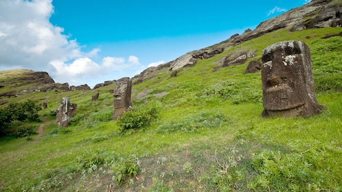 View of the sculptures seen on Easter Island