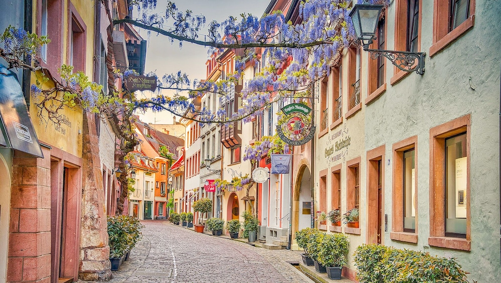 Show item 3 of 6. The Instagrammable Places of Freiburg with a Local