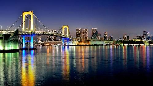 city illuminated at night in Tokyo