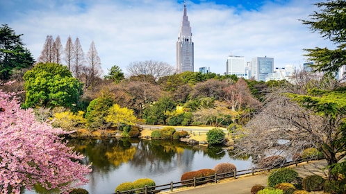 Park and city view in Tokyo
