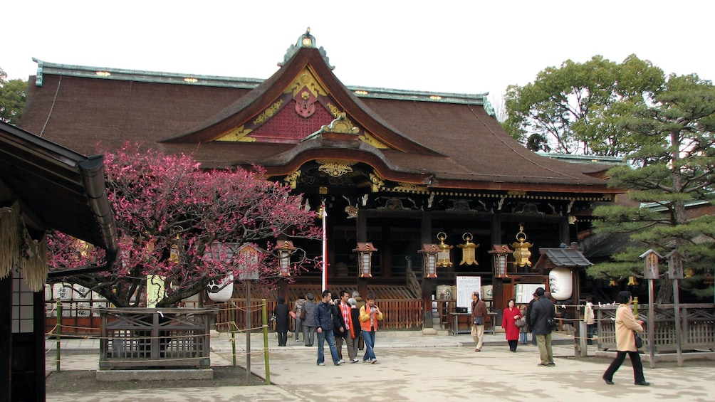 Show item 2 of 5. Visiting a temple in Japan
