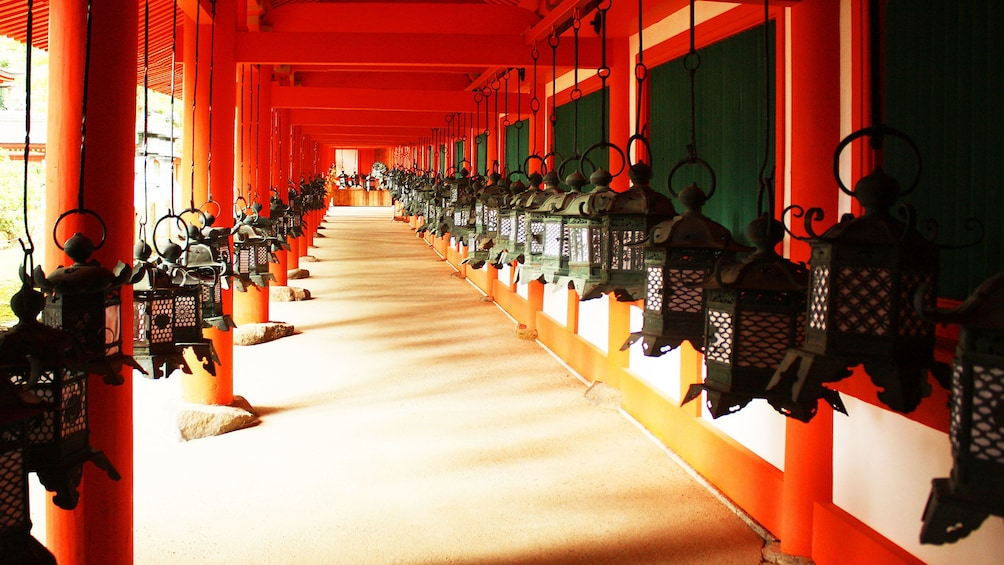 Show item 1 of 5. Rows of lanterns in the temple hallway in Osakaz