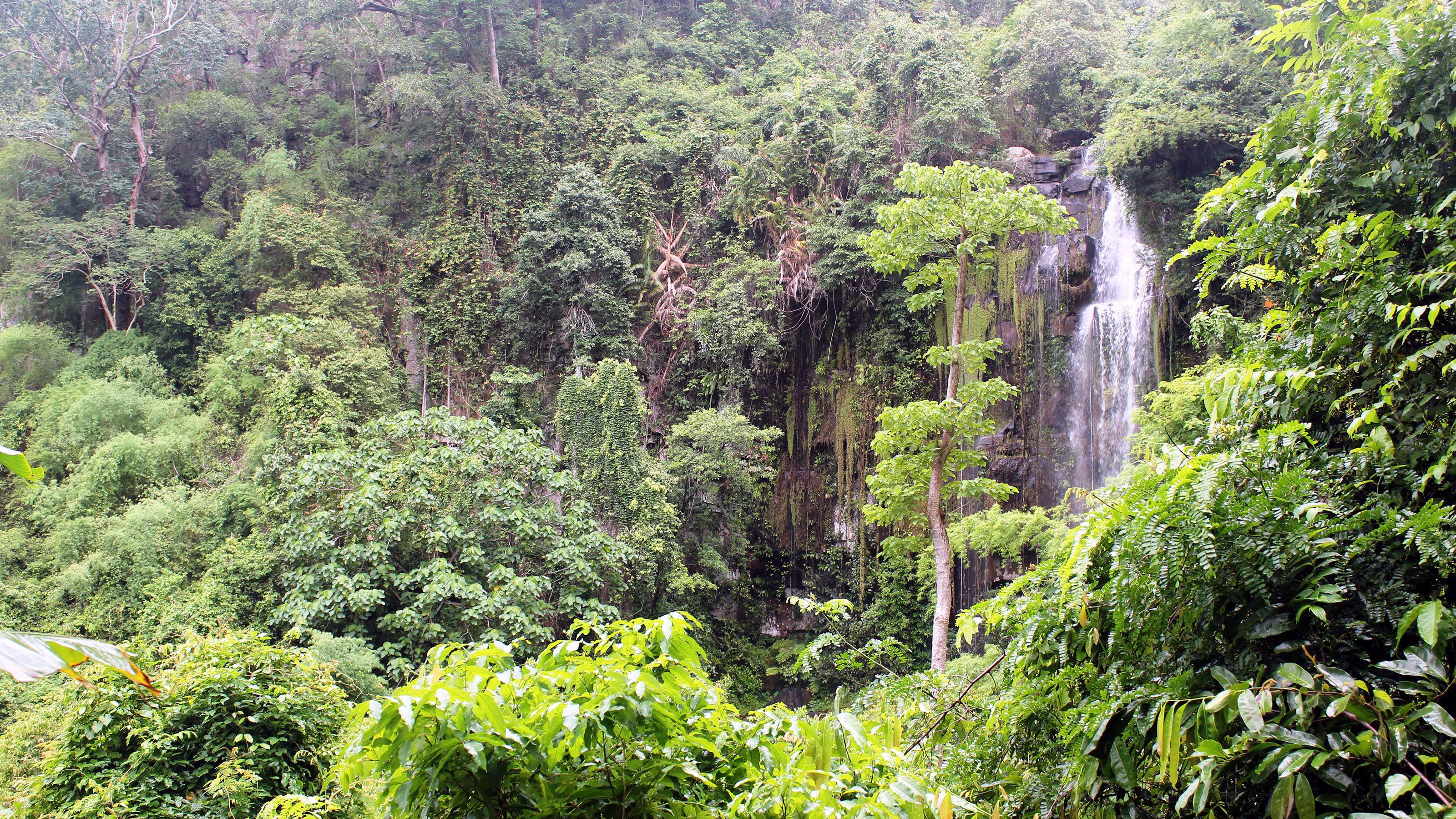 Scenic view of the waterfall and greenery at Kirirom National Park in Phnom Penh