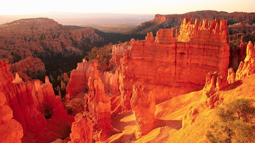 Scenic view atop Bryce Canyon at sunset
