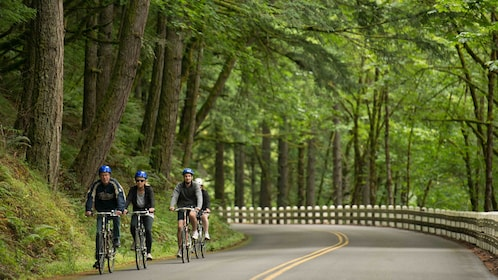 People on bicycles riding along the road near the Columbia River gorge in Oregon