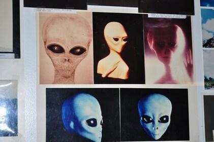 Area-51-Photos-at-Little-Ale-Inn-10x6.6-300-dpi.jpg