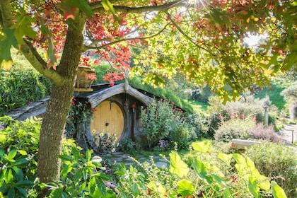 Hobbiton_Autumn_2016-166.jpg