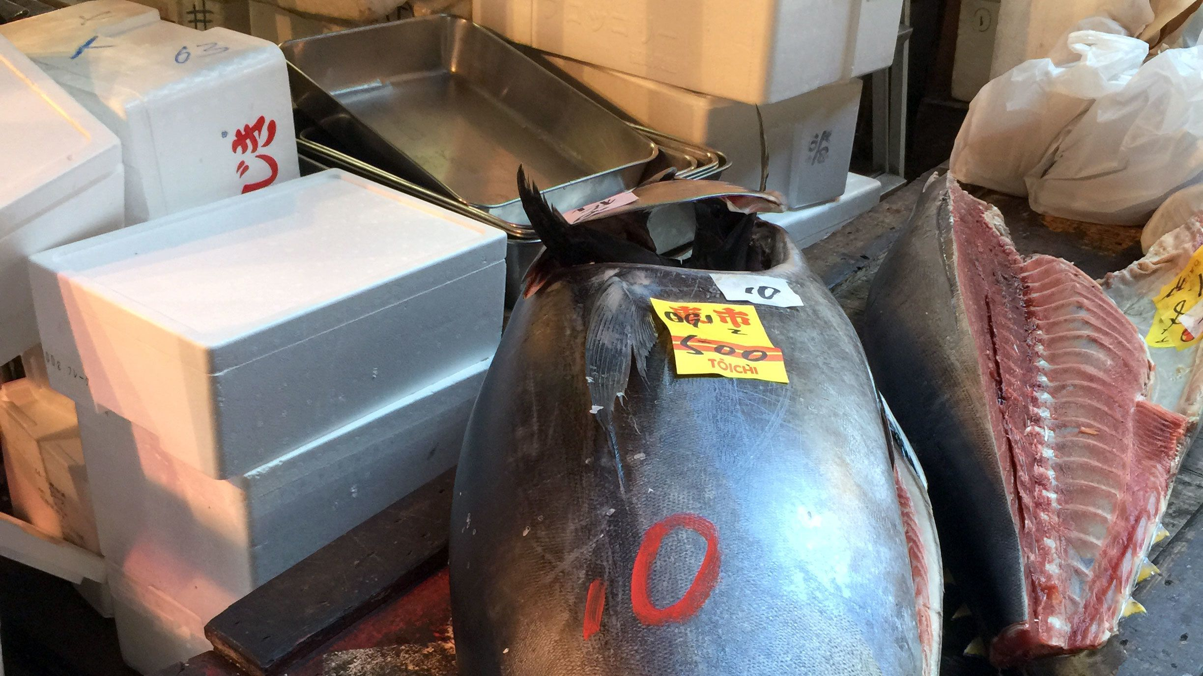 Large sections of tuna in Tokyo