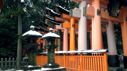 Torii gates line the walkway to Fushimi inari shrine in Kyoto