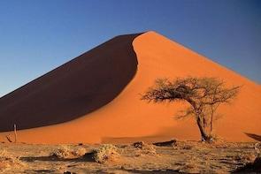 Full Day Namib Desert