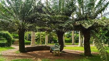 Escape Accra City to Aburi Gardens and Tetteh Quarshie Cocoa