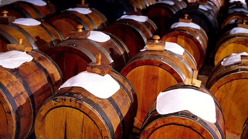 Wooden casks from Bologna