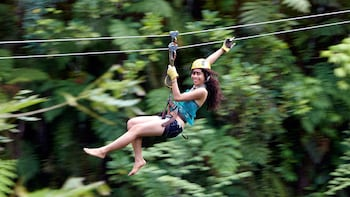 Rainforest Zip line Adventure with Transfers and Light Lunch