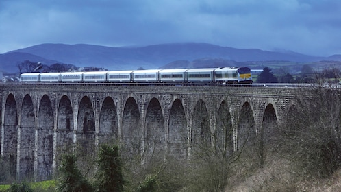 Train crossing a bridge in Ireland