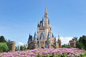 Passeport d'une journée à Tokyo Disneyland