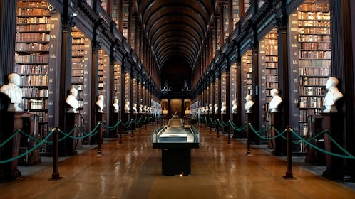 rows of ivory busts along rows of book cases in library in Dublin