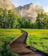 San Francisco: One day Yosemite and Giant Sequoia Tour