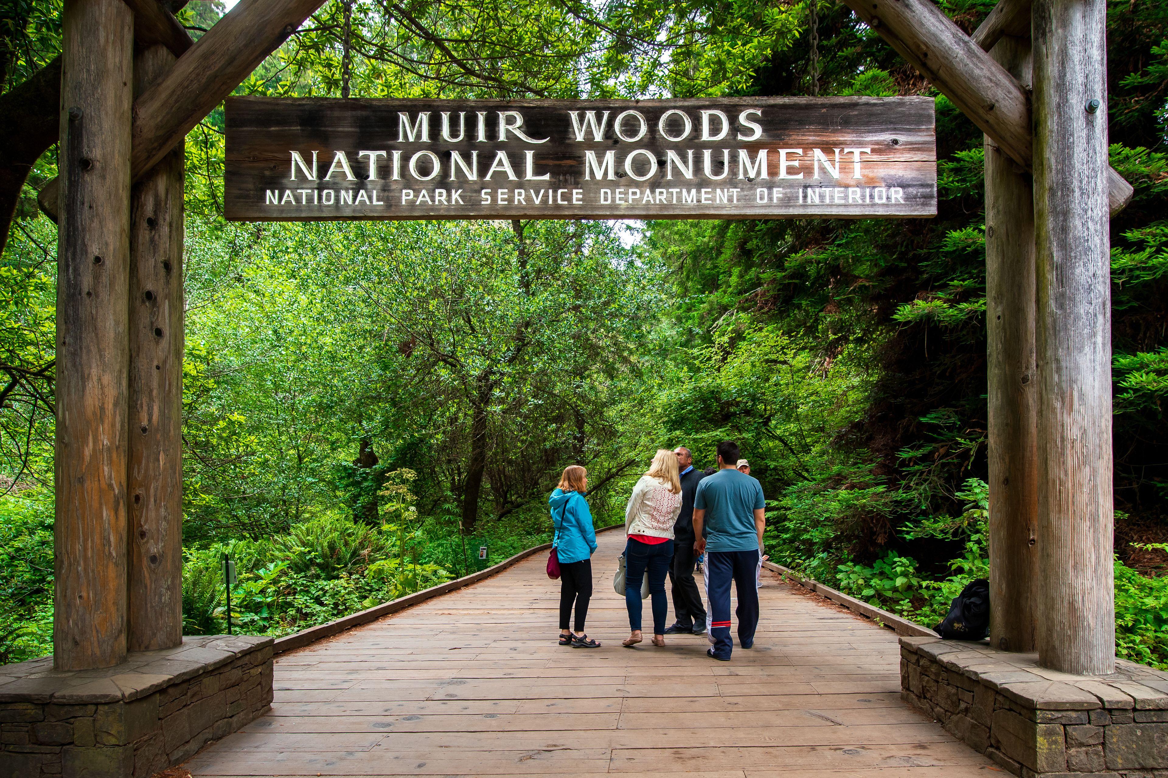 Muir Woods Entry.jpg