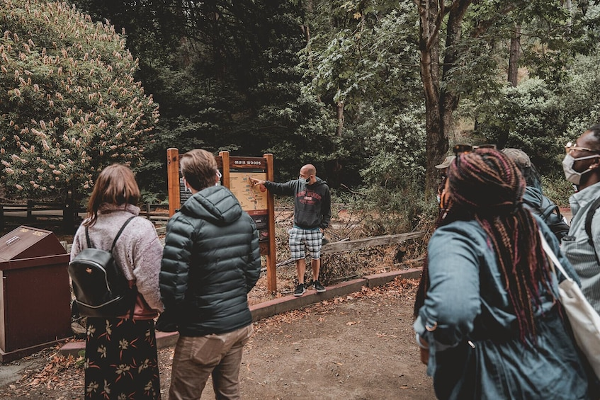 Redwoods & Wine Country Escape to Sonoma & Napa with Optional Gourmet Lunch