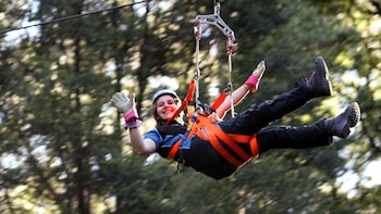 Illawarra Fly Treetop Adventures-Zip line Tour & Treetop Walk