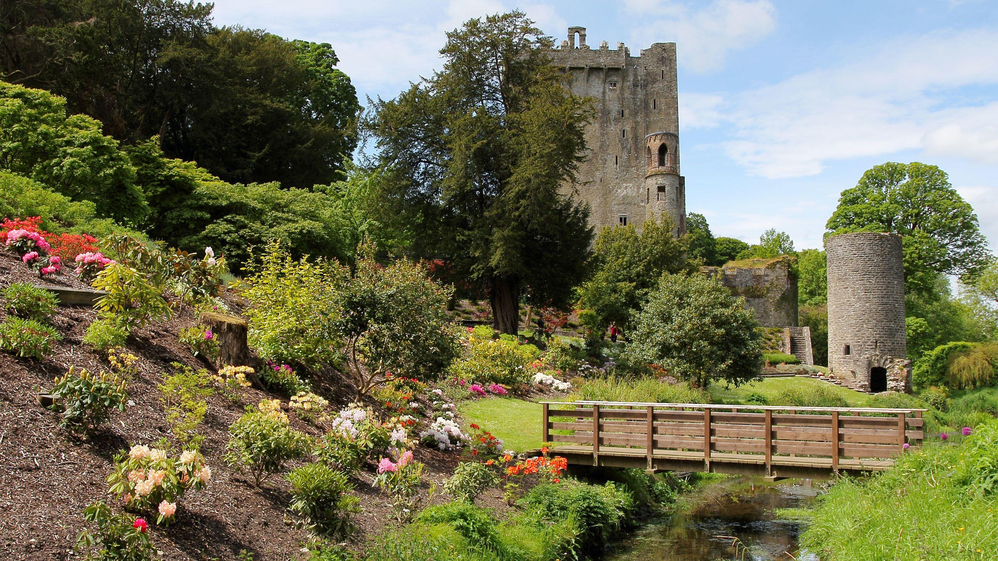 Tagestour zu den Schlössern Blarney Castle und Cahir Castle