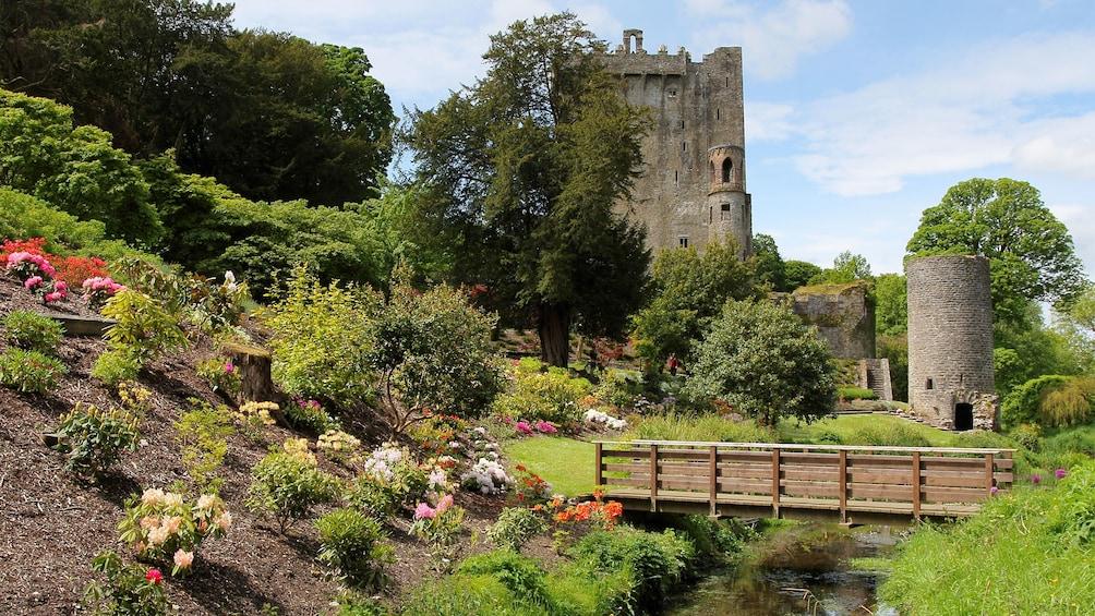 The National Botanic Gardens in Dublin