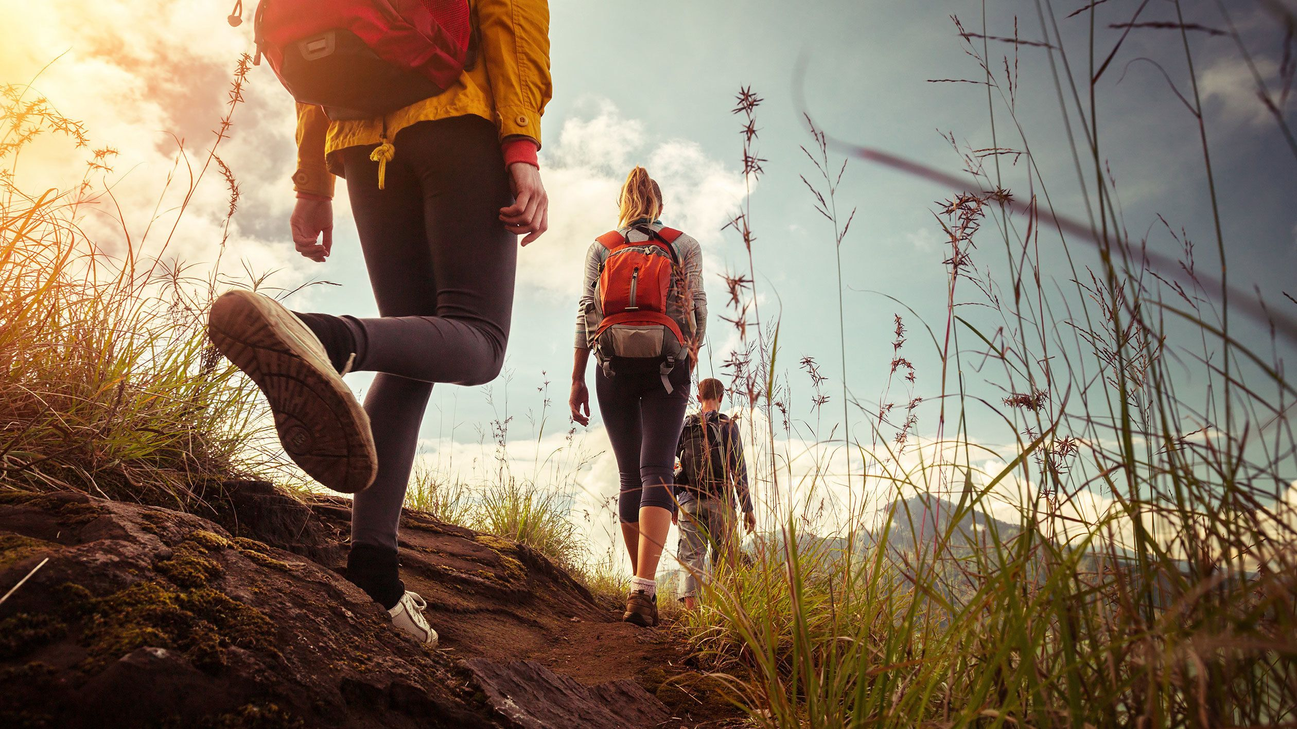 Guided Hiking Tour in the Rocky Mountains