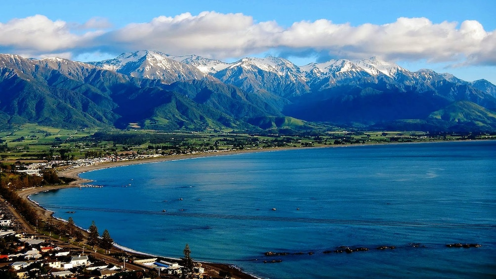 Show item 5 of 5. Shore line of Kaikoura dolphin swimming tour in Christchurch New Zealand.