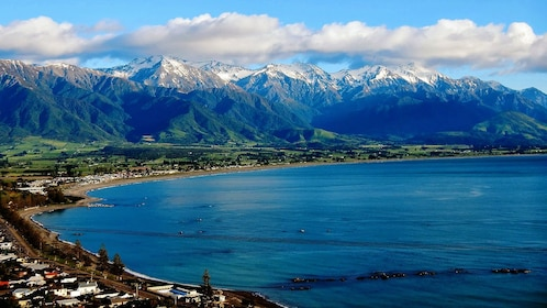 Shore line of Kaikoura dolphin swimming tour in Christchurch New Zealand.