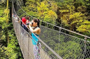 Hanging Bridges Walk + Canyoning Tour