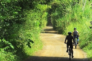 Pereira Full Day Bike Tour: Local Means of Transport Route