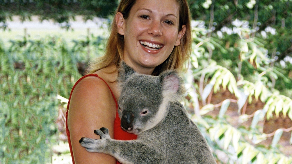 Show item 2 of 5. Woman holding a koala in Brisbane