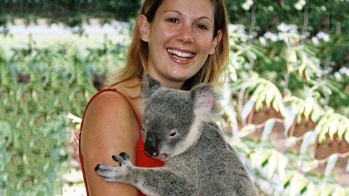 Woman holding a koala in Brisbane