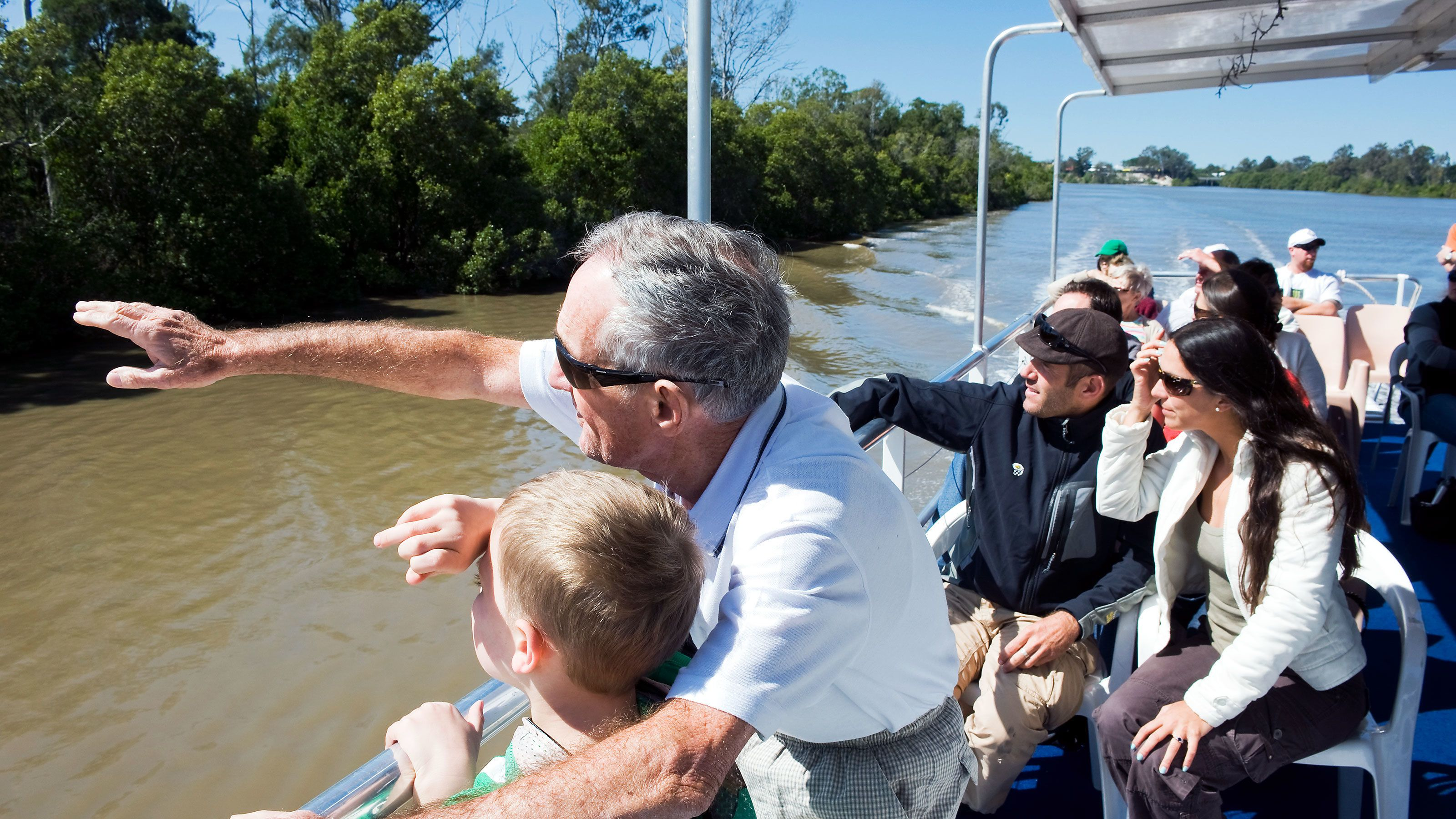 Looking out for Koalas on the river cruise in Brisbane