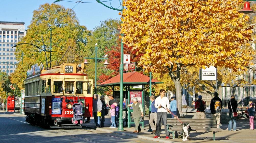 Street view of Christchurch City Tour in Christchurch New Zealand.