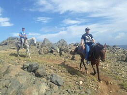Horseback Riding 3HRS for Advanced Riders