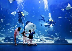 Aqua planet Ilsan Discount Ticket