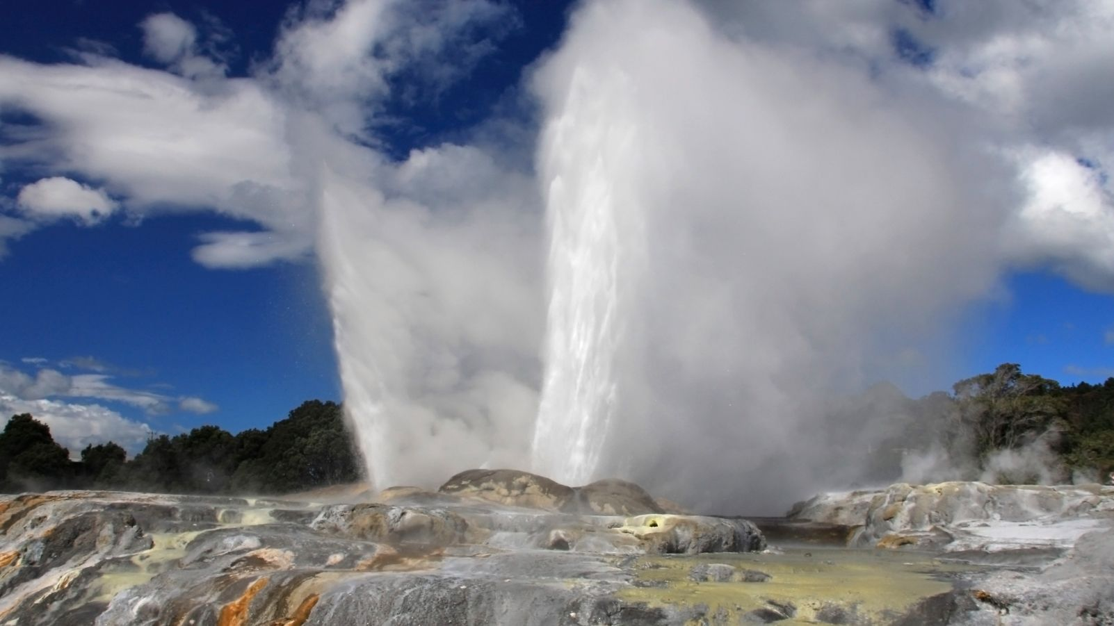 Geyser in the North to South tour in Canterbury New Zealand.