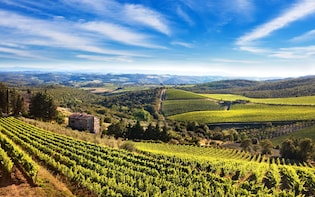 """Private Tour """"The Essence of Tuscany"""" from Florence"""