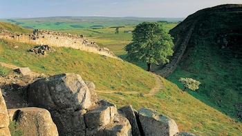 Small-Group Hadrian's Wall, Roman Britain & Borders Full-Day Tour