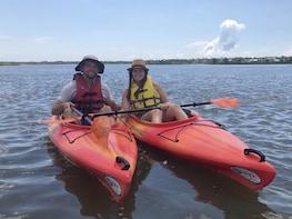 2 Hour Guided Kayak Tour