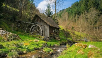 Culture and Traditions Private Hike through the Black Forest