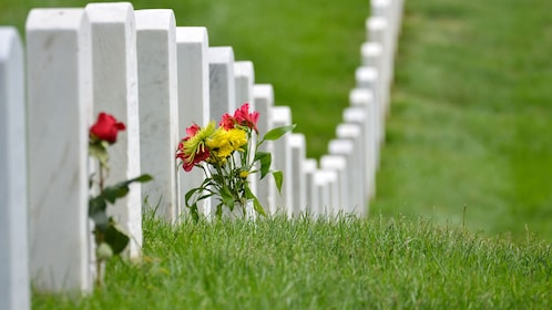 Row of tombstones with flowers at the Arlington National Cemetery in Washington DC