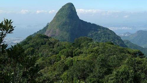 Pico da Tijuca the highest peak in Rio de Janeiro