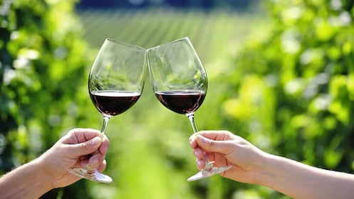 Toasting wine glasses in Dubrovnik